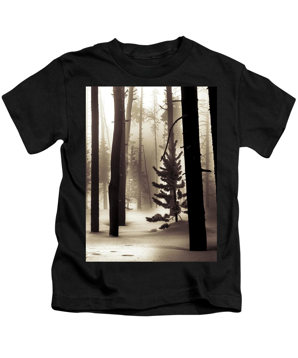Winter Kids T-Shirt featuring the photograph Winter Forest by Leland D Howard