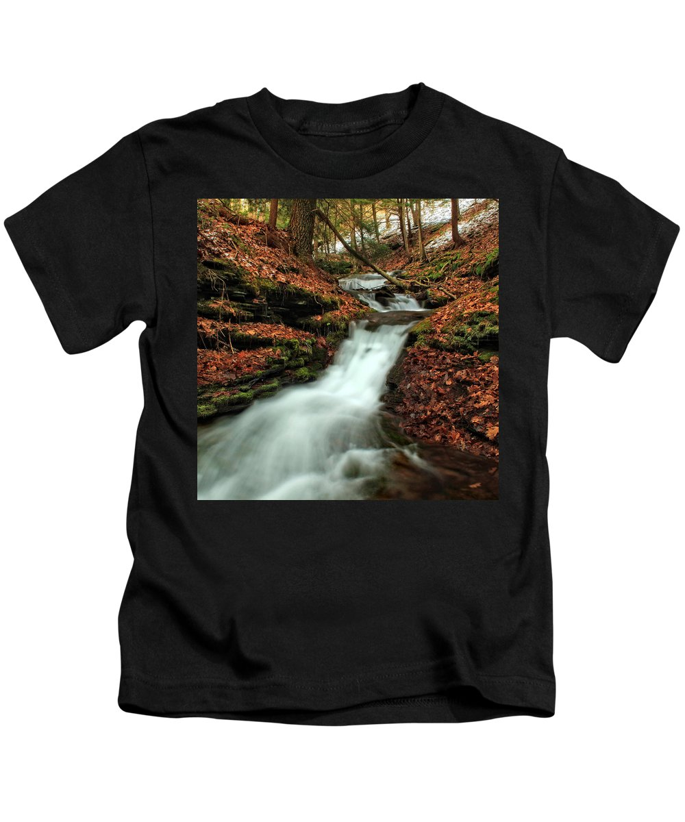 Columbia Gorge Kids T-Shirt featuring the photograph Wolf Run 4 by Ingrid Smith-Johnsen