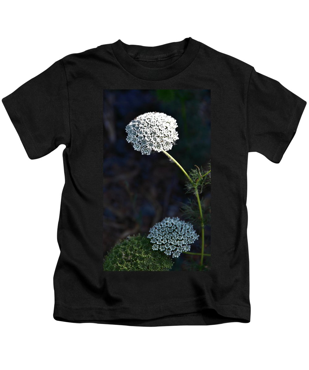 Yarrow Kids T-Shirt featuring the photograph Yarrow In Stages by Josephine Buschman