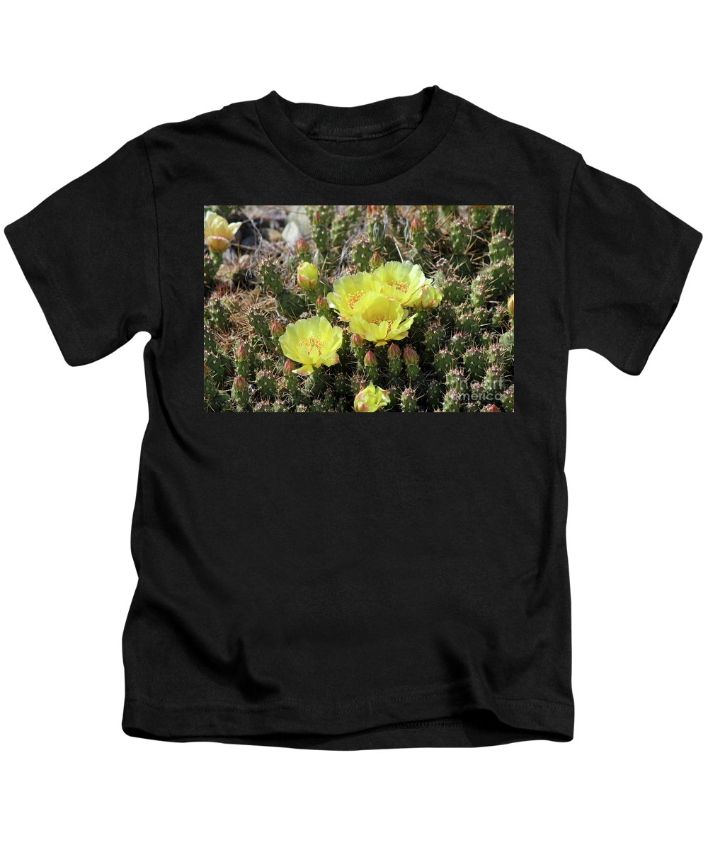 Yellow Kids T-Shirt featuring the photograph Yellow Cactus Blooms by Ann E Robson
