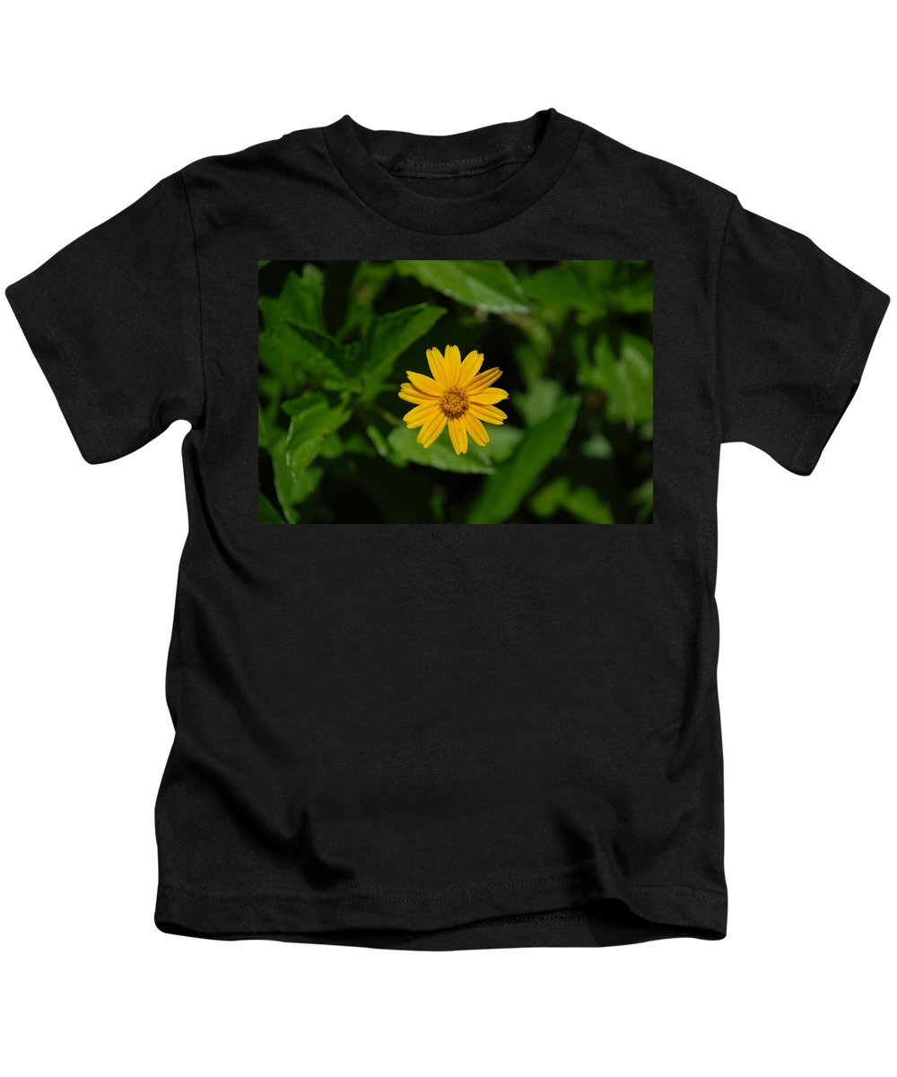 Macro Kids T-Shirt featuring the photograph Yellow by Rob Hans