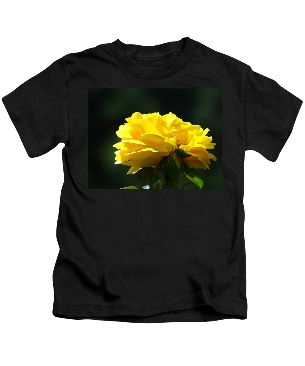 Rose Kids T-Shirt featuring the photograph Yellow Rose Sunlit Rose Garden Landscape Art Baslee Troutman by Baslee Troutman