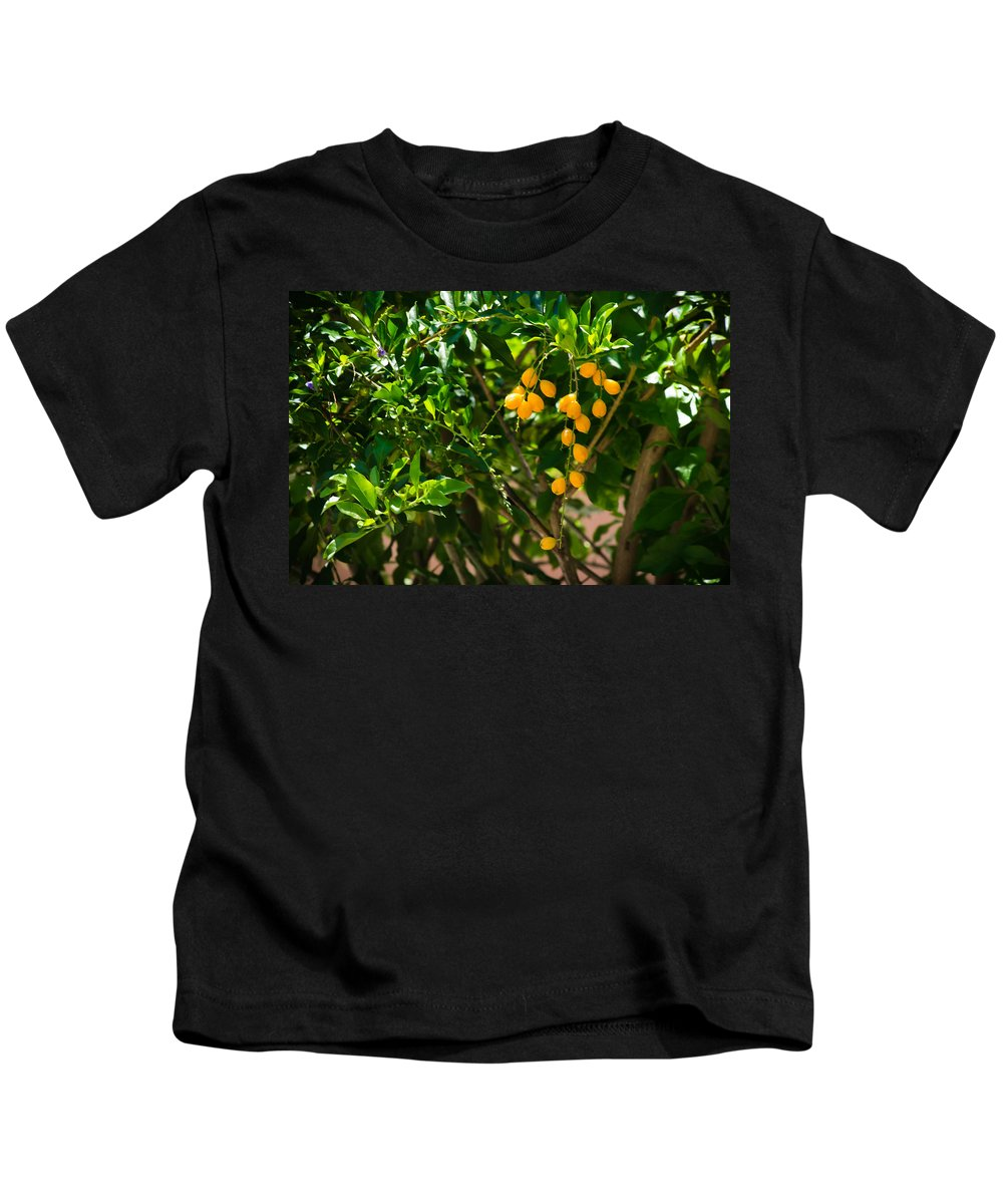 Seeds Kids T-Shirt featuring the photograph Yellow Seeds by Totto Ponce