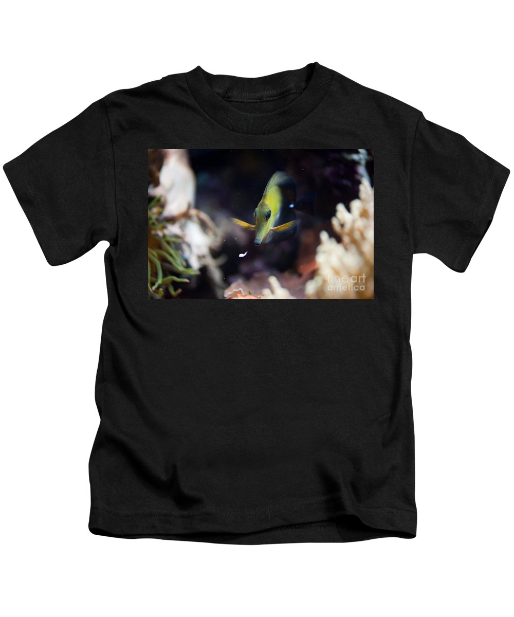Zoo Kids T-Shirt featuring the photograph Yellow Spotted Aquarium Fish by Arletta Cwalina