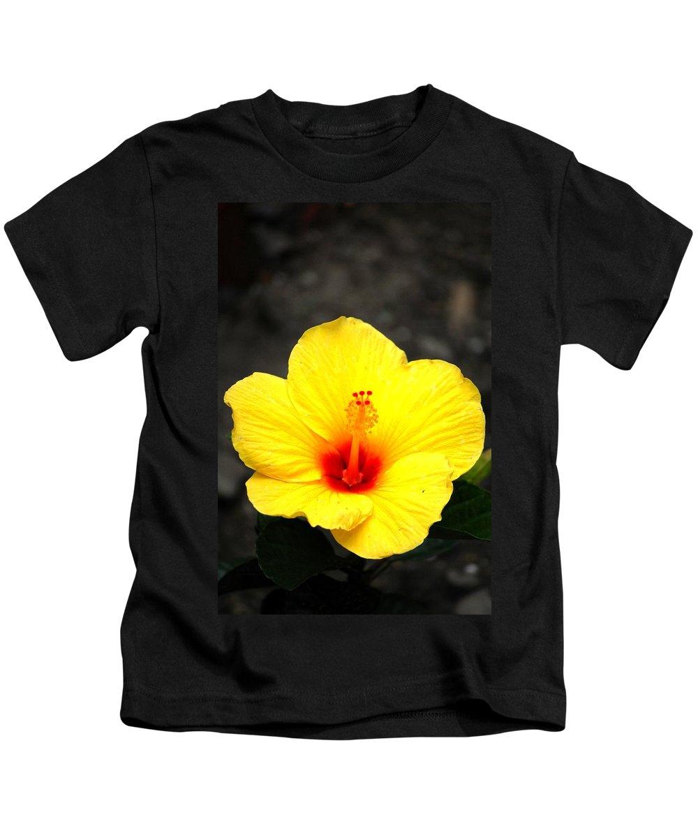 Digital Photo Kids T-Shirt featuring the photograph Yellow Wonder by David Lane