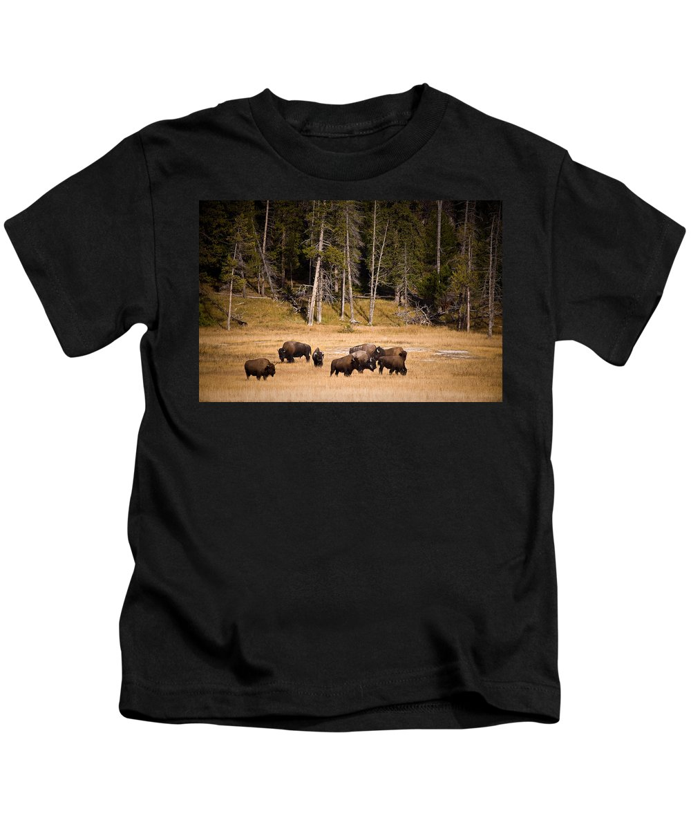 Bison Kids T-Shirt featuring the photograph Yellowstone Bison by Steve Gadomski