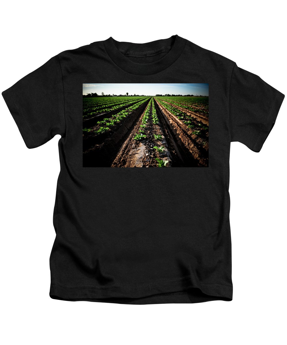 Lettuce Kids T-Shirt featuring the photograph Yuma Lettuce by Scott Sawyer