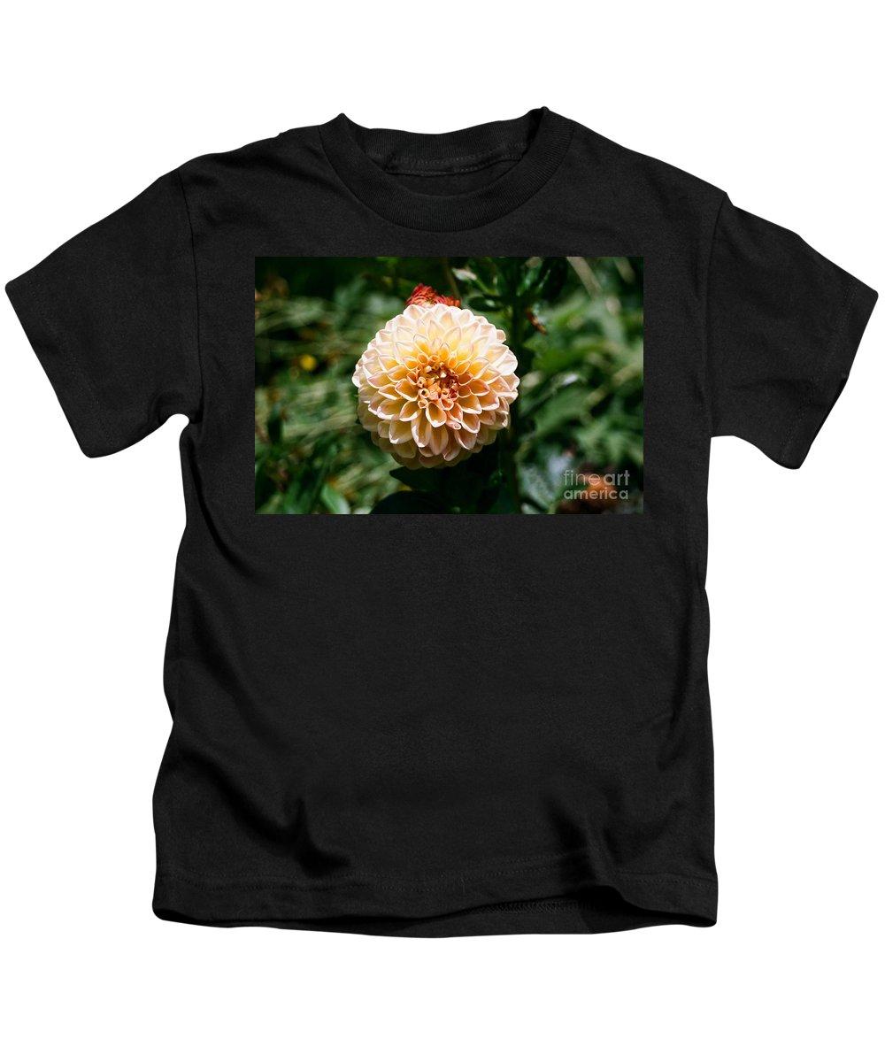 Zinnia Kids T-Shirt featuring the photograph Zinnia by Dean Triolo
