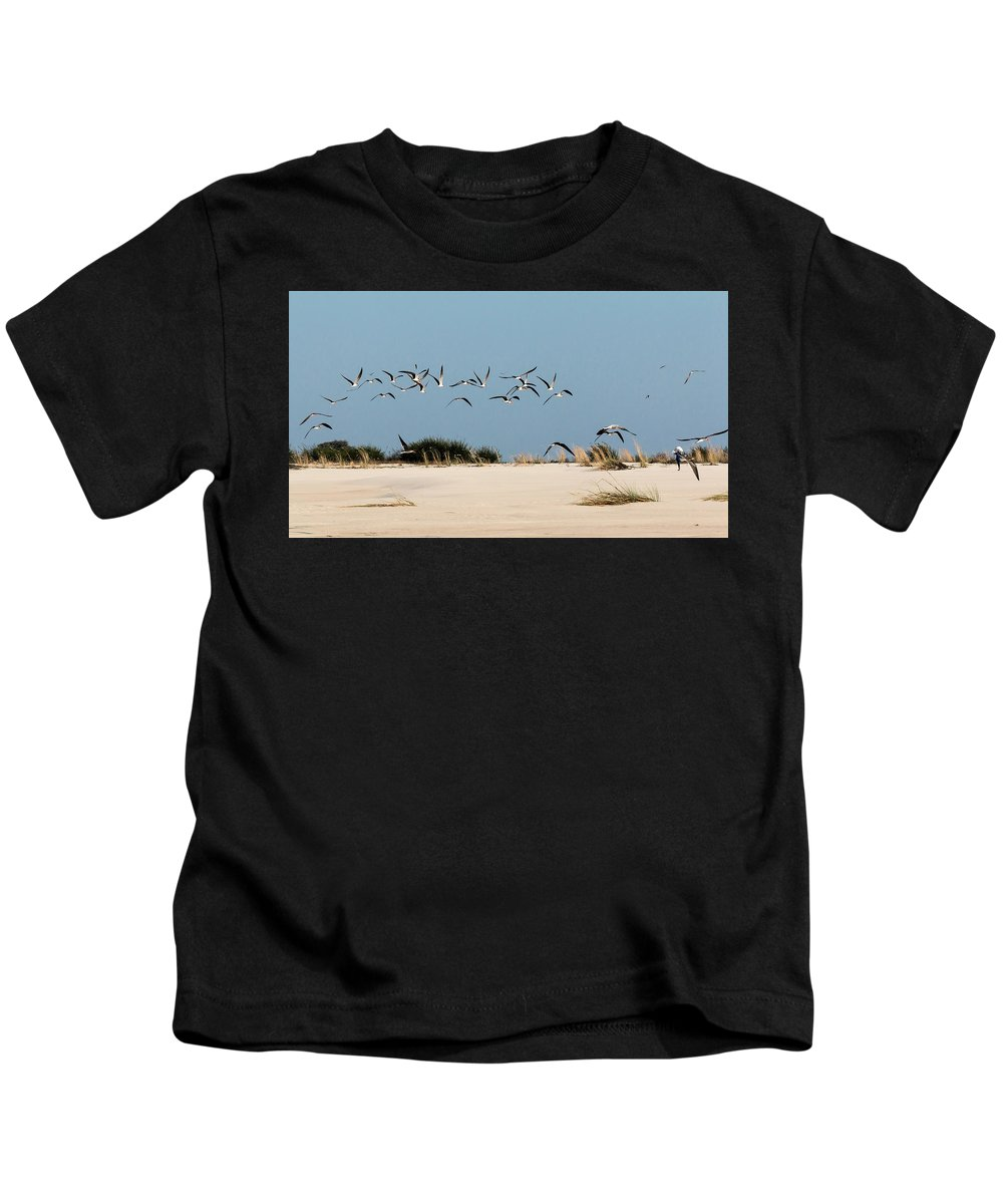 Skimmer Kids T-Shirt featuring the photograph African Skimmers by Claudio Maioli