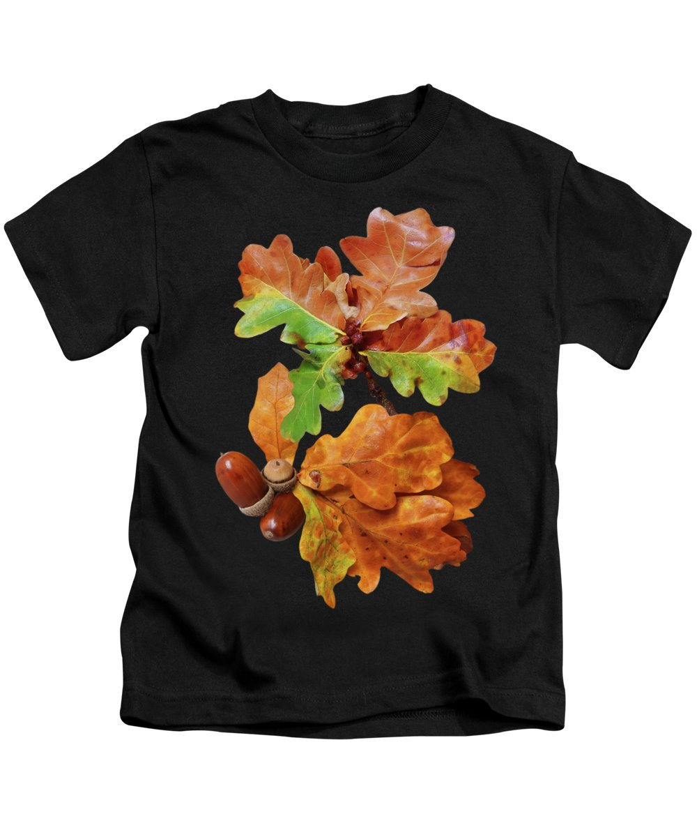 Autumn Leaves Kids T-Shirt featuring the photograph Autumn Oak Leaves And Acorns On Black by Gill Billington