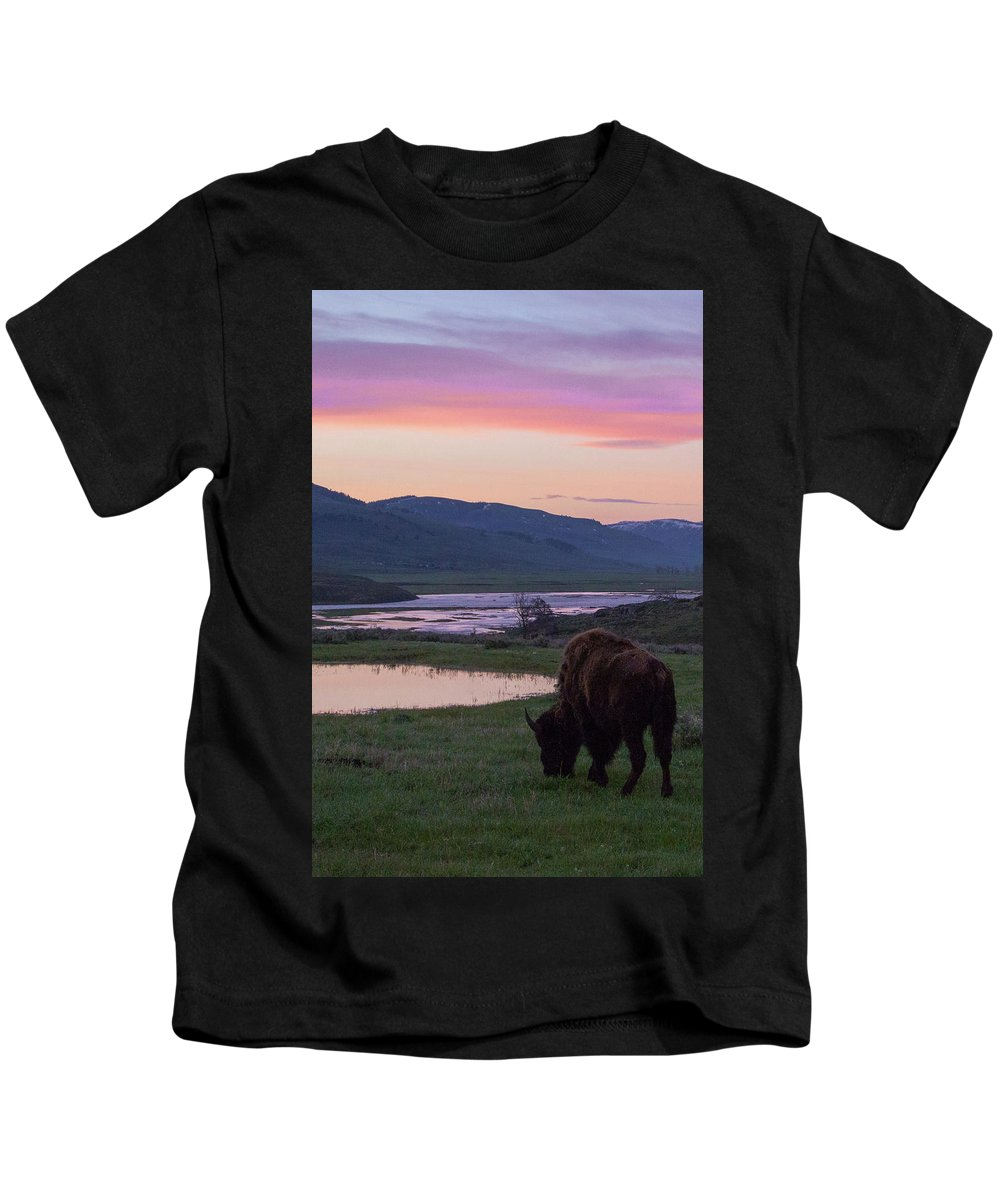 Wildlife Kids T-Shirt featuring the photograph Bison At Sunrise by Jason Bohl
