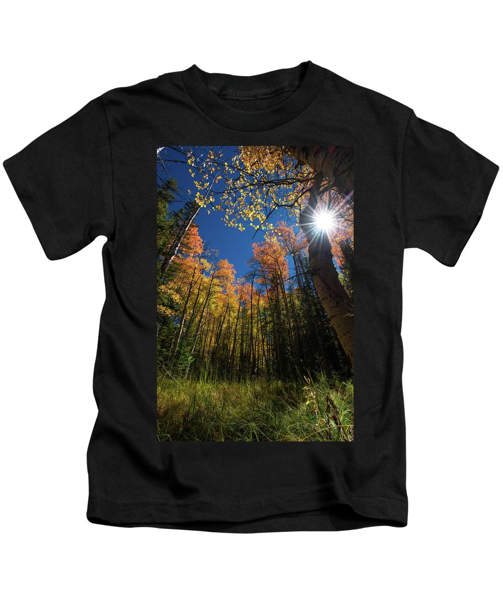 Colorado Kids T-Shirt featuring the photograph Colorado Gold by Christopher Thomas