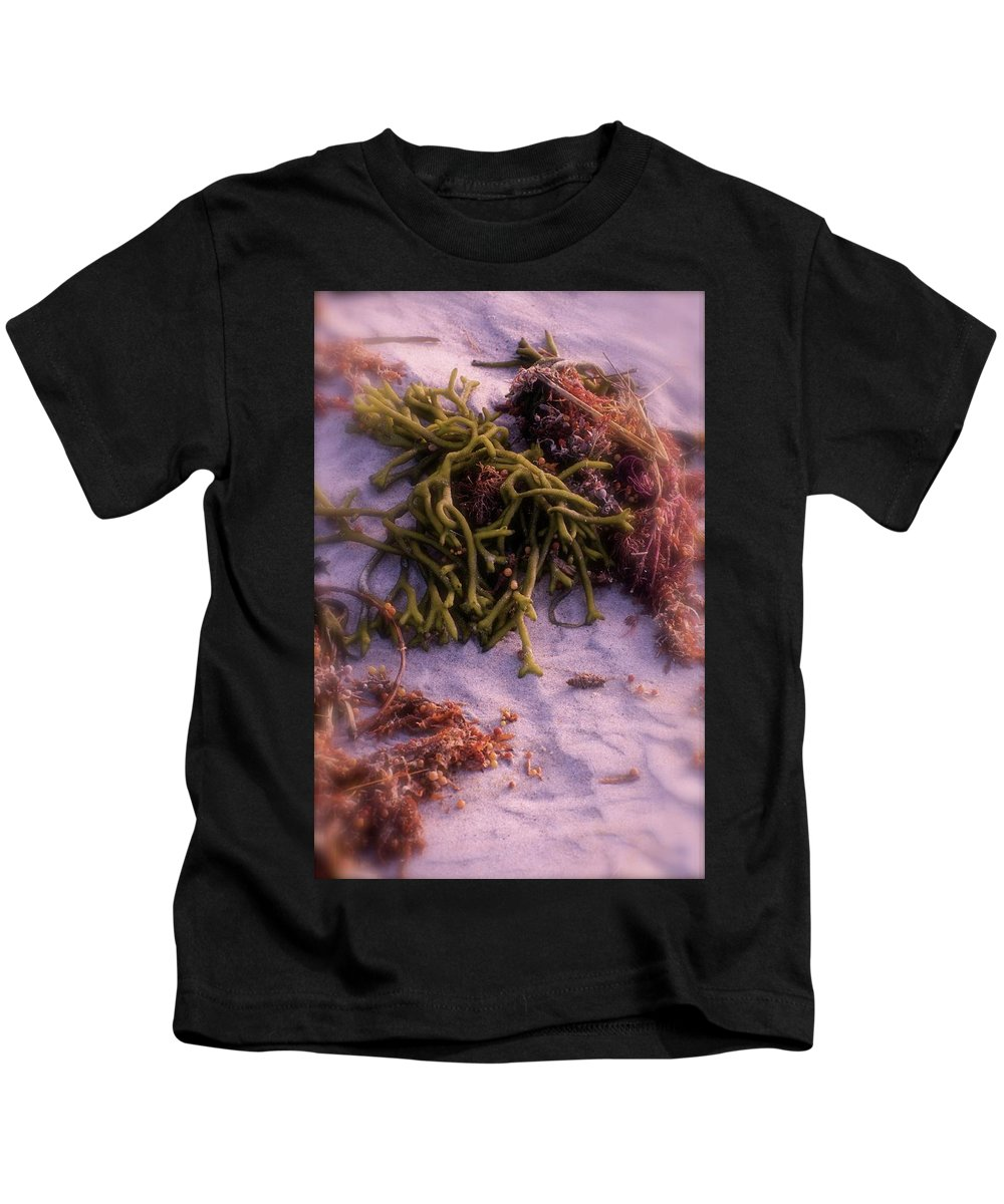 Seawood Kids T-Shirt featuring the photograph Seaweed by Marge Marino
