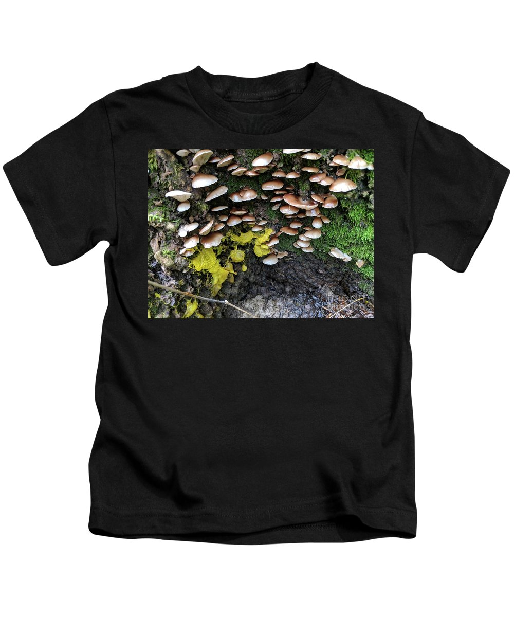 Mushrooms Kids T-Shirt featuring the photograph The Slow Battle by Hunted Gatherings