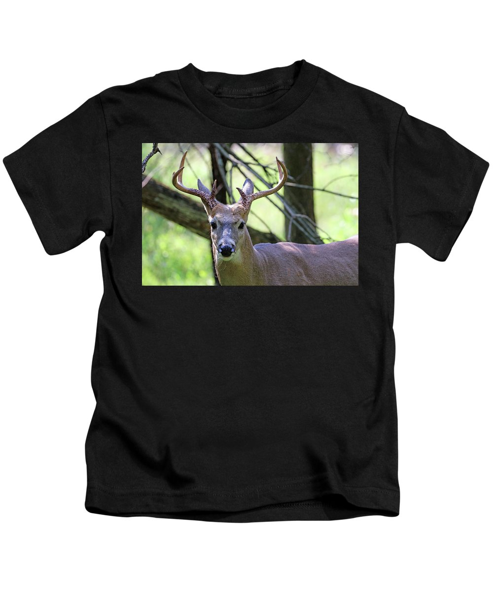 Deer Kids T-Shirt featuring the photograph White Tailed Buck Portrait I by Debbie Oppermann