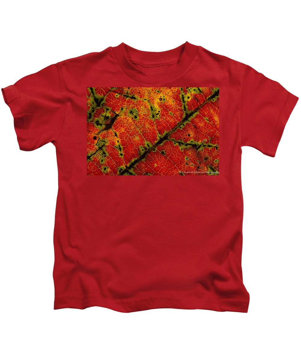 Fall Kids T-Shirt featuring the photograph Anatomy Of The Fall... by Eduard Moldoveanu
