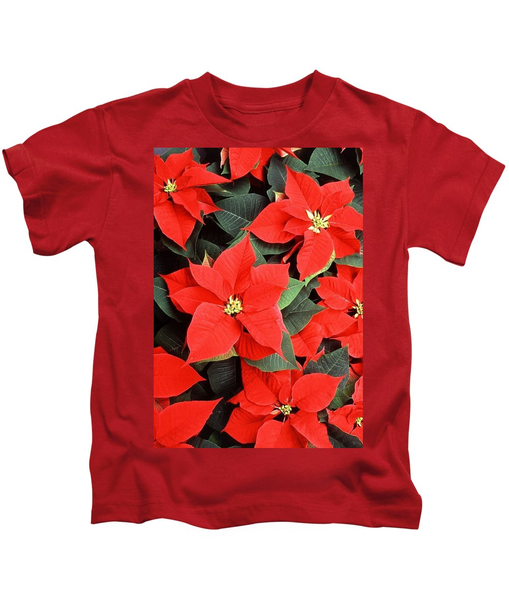 Christmas Kids T-Shirt featuring the photograph Beautiful Red Poinsettia Christmas Flowers by Taiche Acrylic Art
