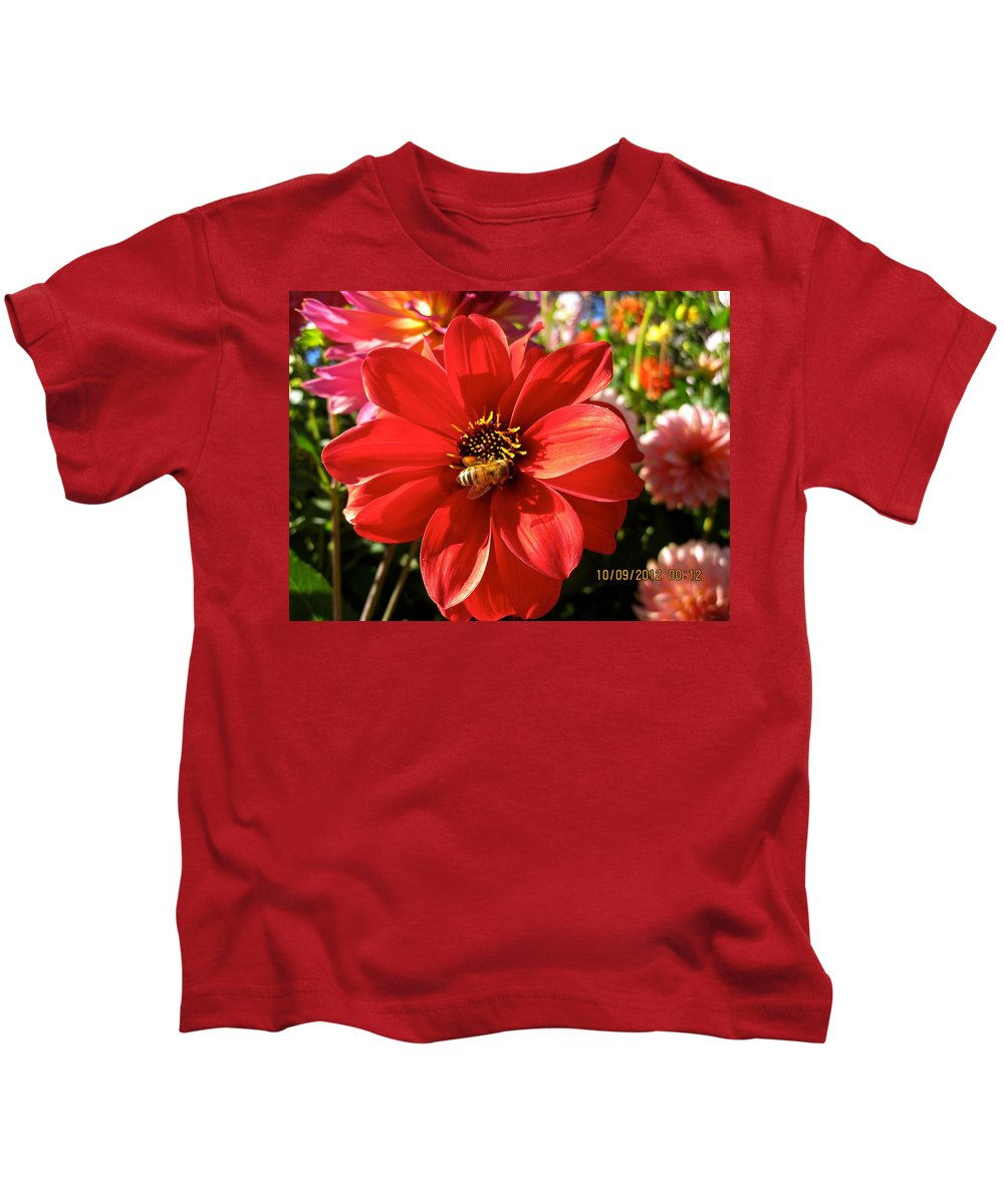 Flowers Kids T-Shirt featuring the photograph Bee's Dahlia Delight by Csilla Florida