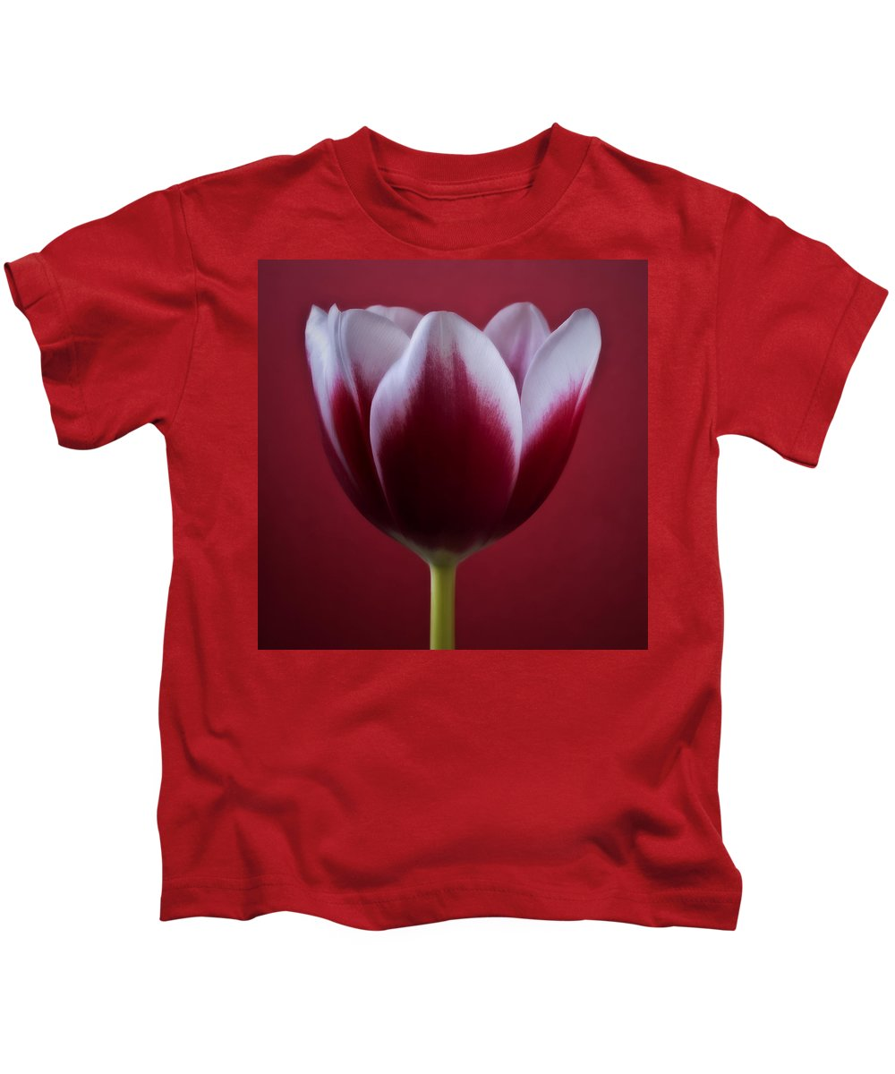 Flowers Kids T-Shirt featuring the photograph Abstract Red White Flowers Tulips Macro Photography Art by Artecco Fine Art Photography