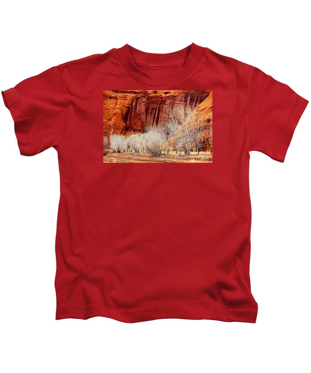 Canyons Kids T-Shirt featuring the photograph Canyon De Chelly - Spring II by Barbara Zahno