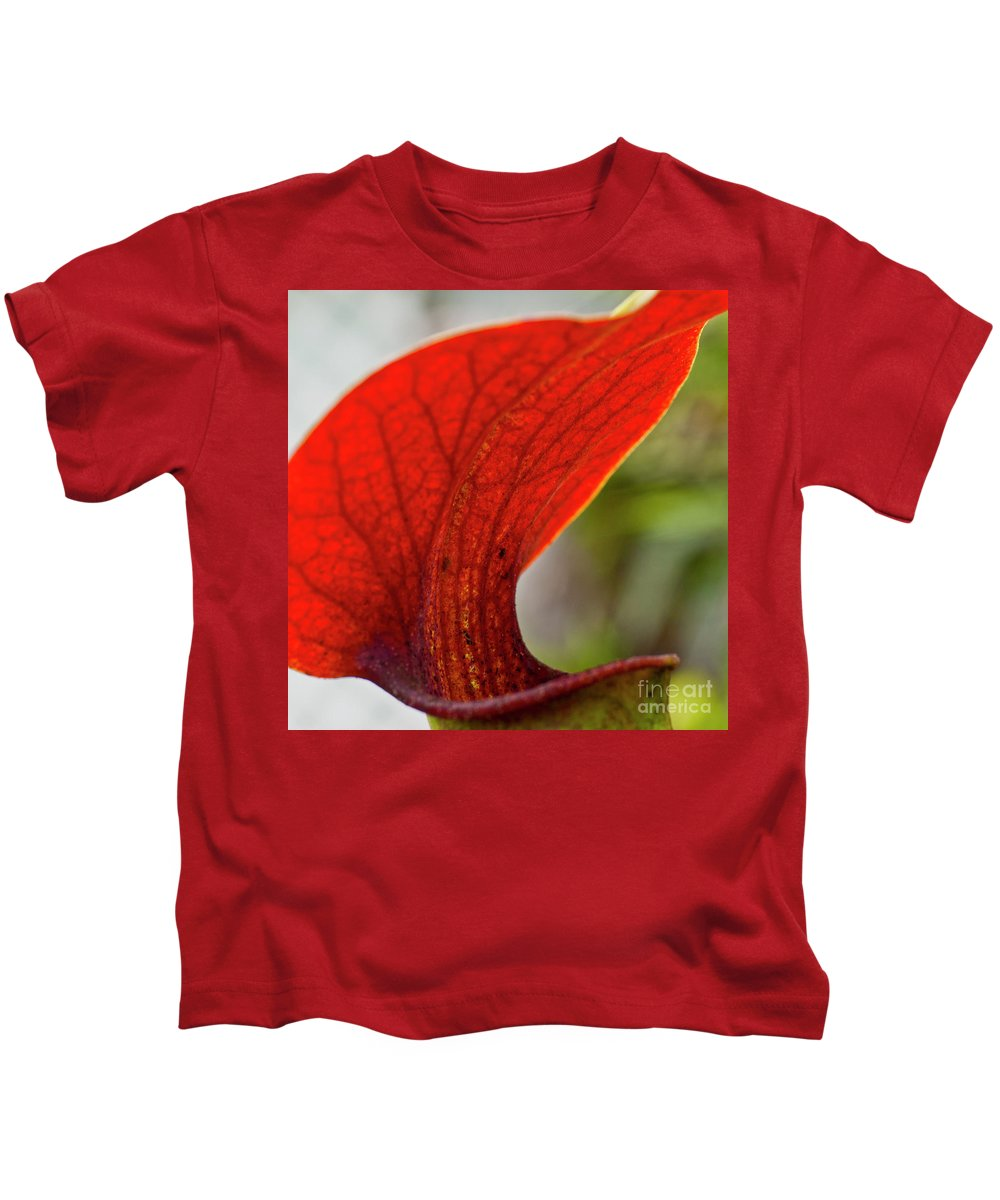 Heiko Kids T-Shirt featuring the photograph Carnivorous Plants 2 by Heiko Koehrer-Wagner