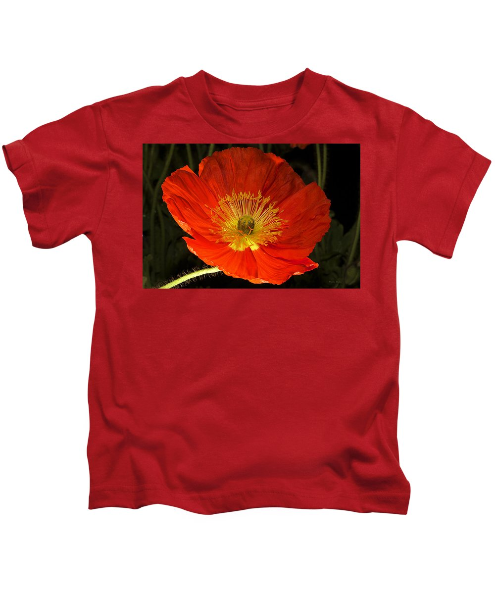 Poppy Kids T-Shirt featuring the photograph Catching The Light by Phyllis Denton