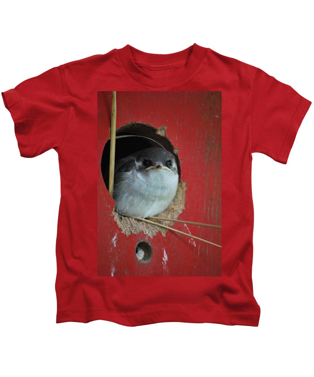 Bird Kids T-Shirt featuring the photograph Checkin Me Out by Kathy Sampson