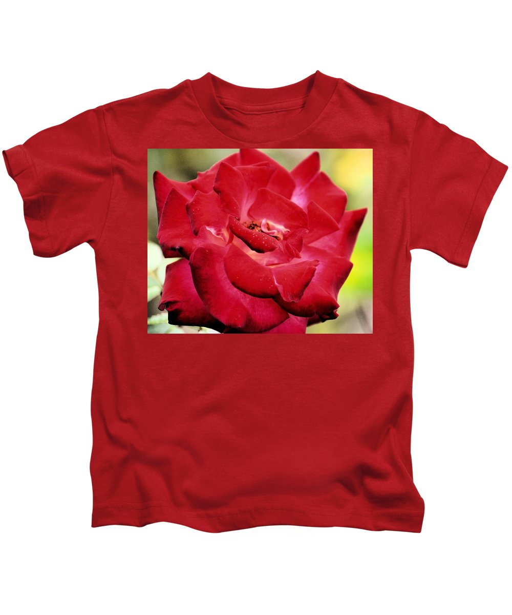 Cherry Cream Rose Kids T-Shirt featuring the photograph Cherry Cream Rose by Maria Urso