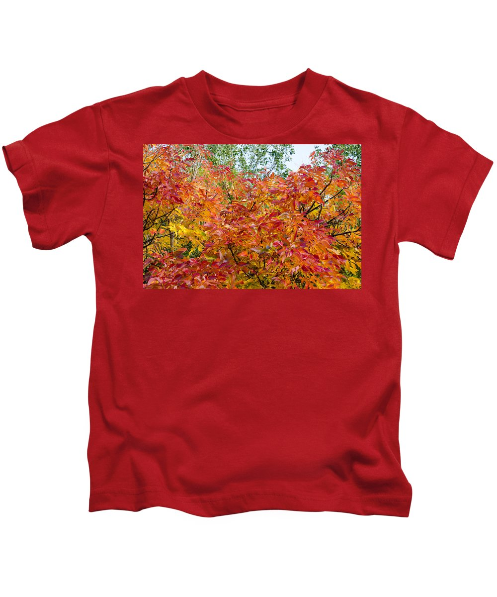 Leaves Kids T-Shirt featuring the photograph Colorful Leaves In Autumn by Alexandre Martins