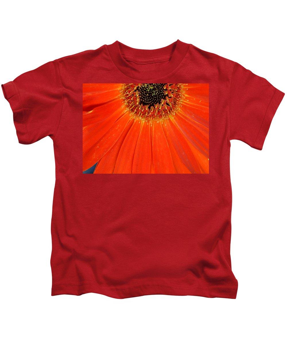 Gerber Kids T-Shirt featuring the photograph Dsc886d-001 by Kimberlie Gerner
