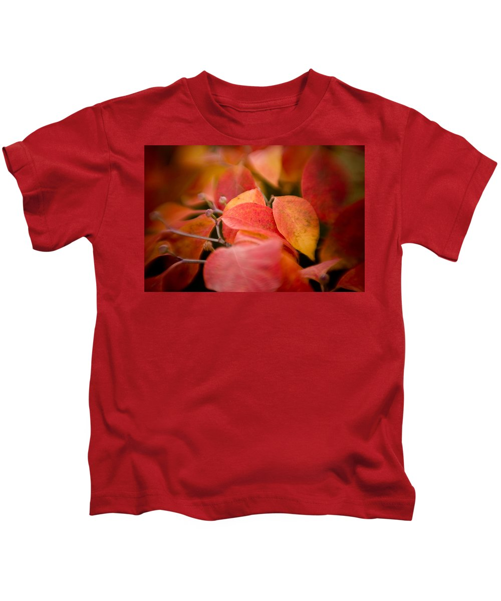 Color Kids T-Shirt featuring the photograph Fall Colors 6675 by Timothy Bischoff