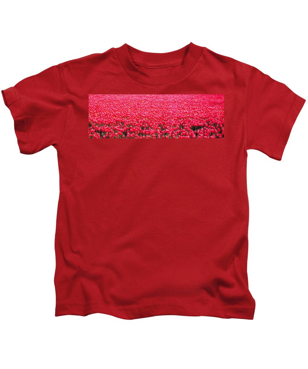 Photography Kids T-Shirt featuring the photograph Fields Of Tulips Alkmaar Vicinity by Panoramic Images
