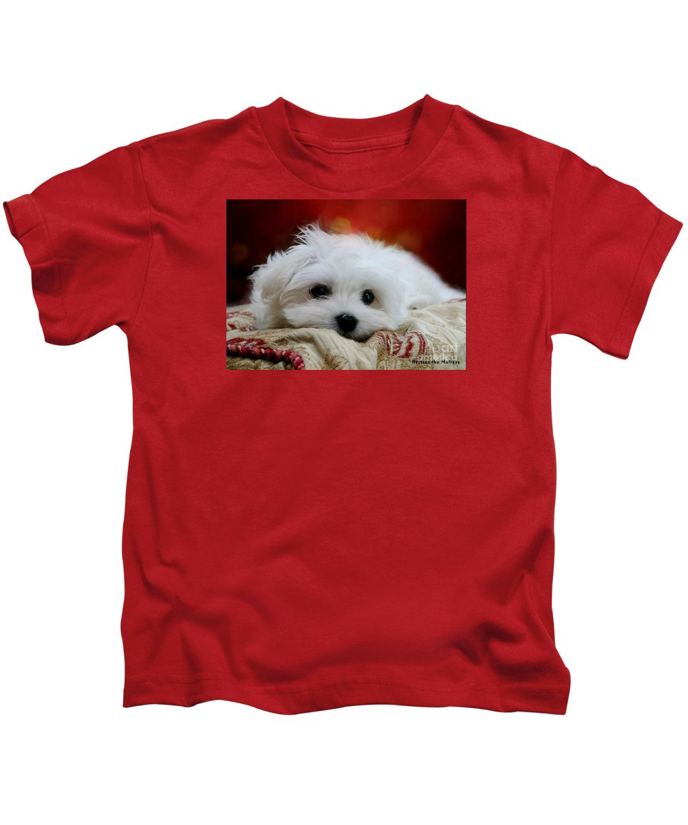 Maltese Puppy Kids T-Shirt featuring the pyrography Hermes The Maltese by Morag Bates