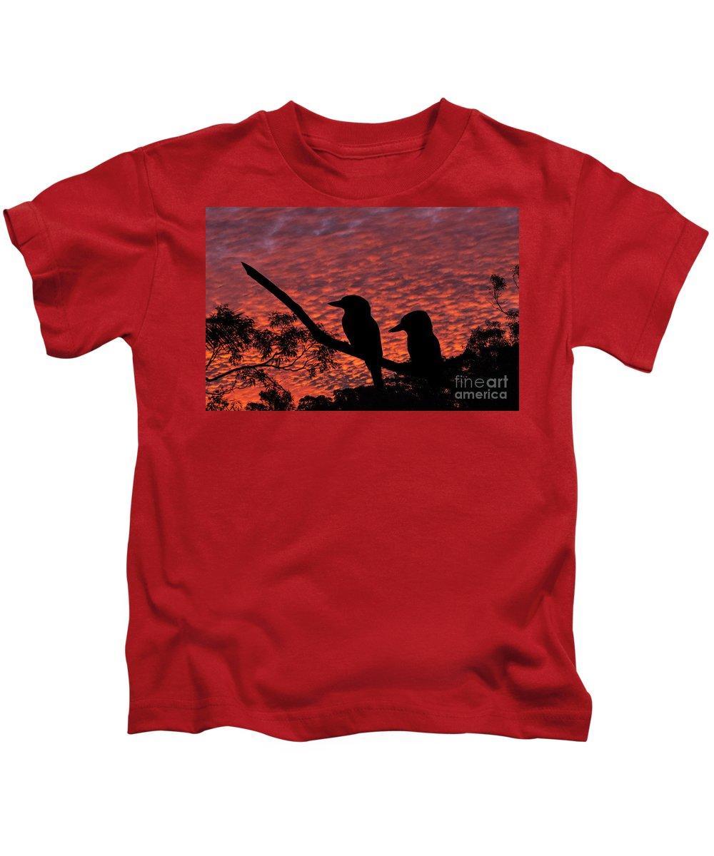 Kookaburras Kids T-Shirt featuring the photograph Kookaburras at sunset by Sheila Smart Fine Art Photography
