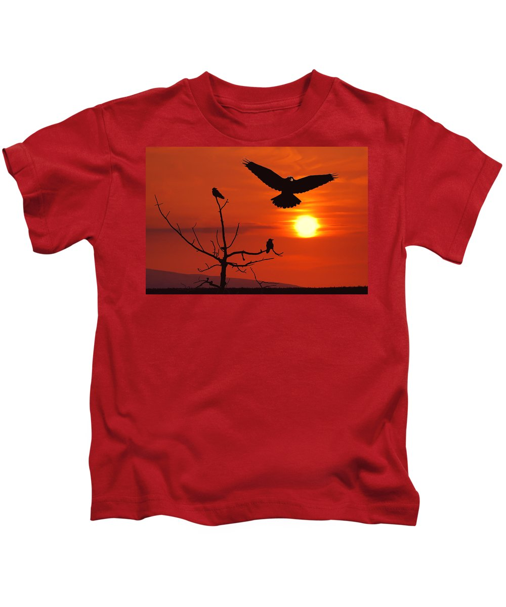 Nature Kids T-Shirt featuring the photograph Raven Maniac by Ron Day