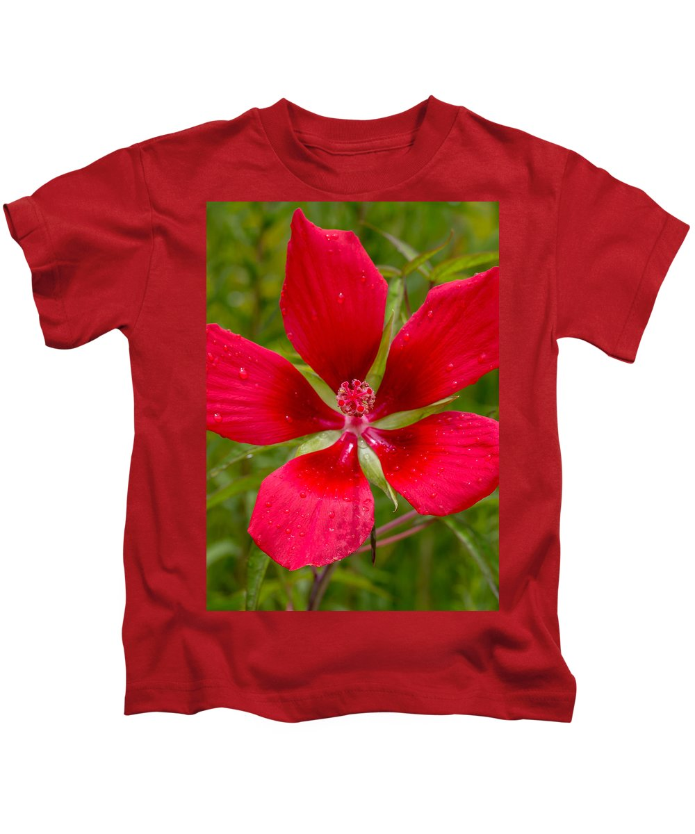 Flowers Kids T-Shirt featuring the photograph Red Hibiscus by Dennis Goodman