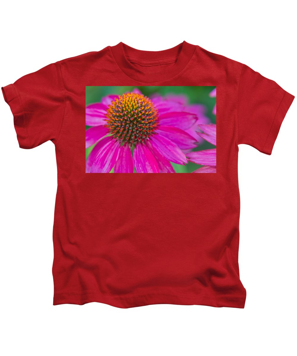 Coneflower Kids T-Shirt featuring the photograph Summer Passion by Lindley Johnson