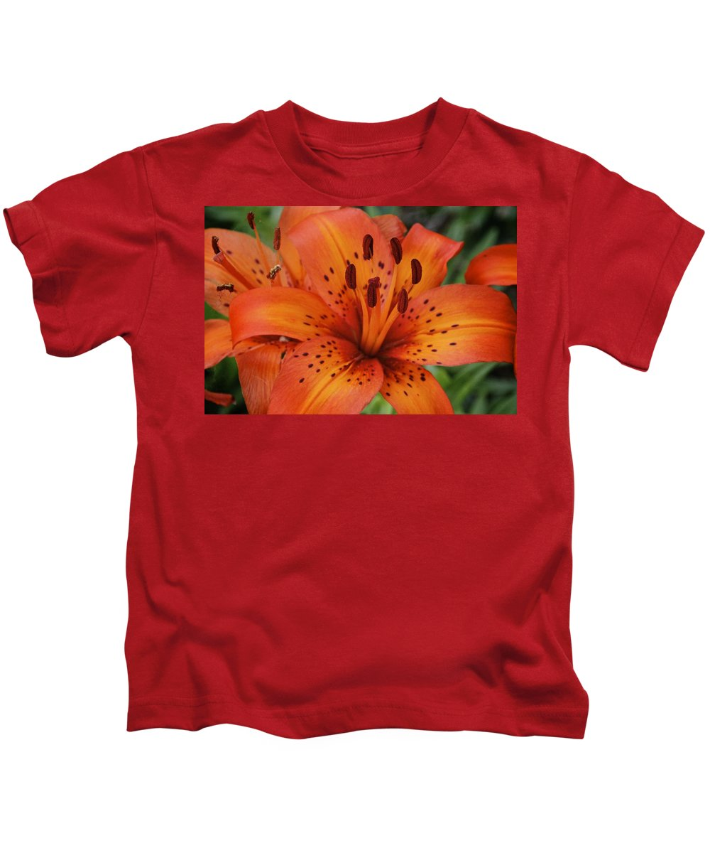 Tiger Lily Kids T-Shirt featuring the photograph Tiger Lily by Lori Burrows