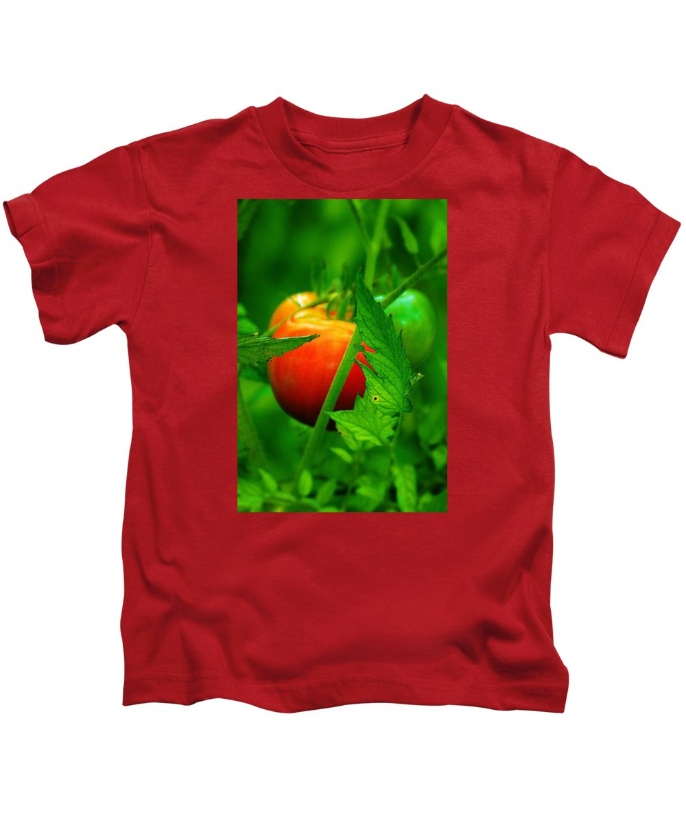 Tomato Kids T-Shirt featuring the photograph Vine Ripened by Daniel Thompson