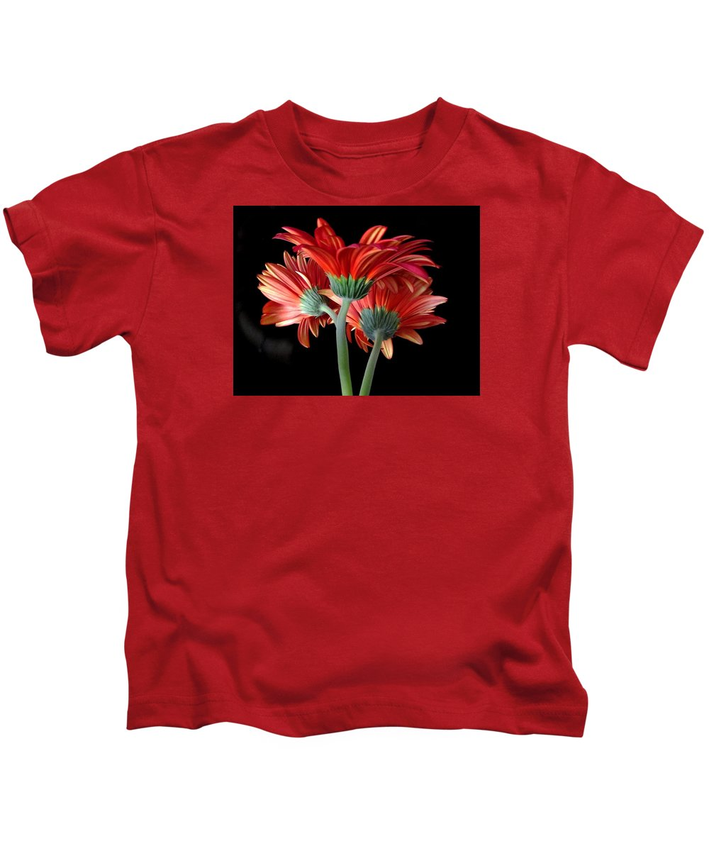 Gerbera Daisy Kids T-Shirt featuring the photograph With Love by Brenda Pressnall