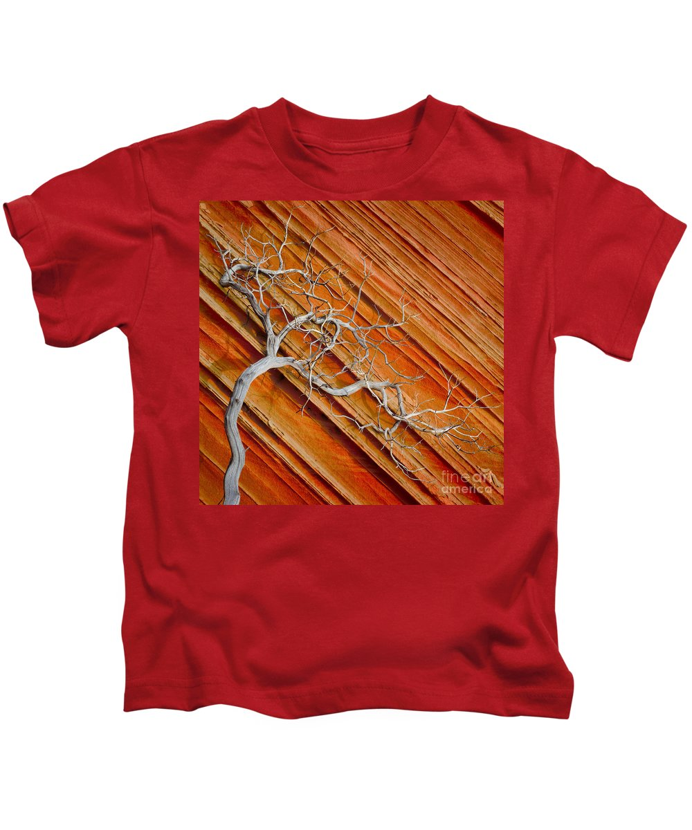 America Kids T-Shirt featuring the photograph Wood And Stone by Inge Johnsson