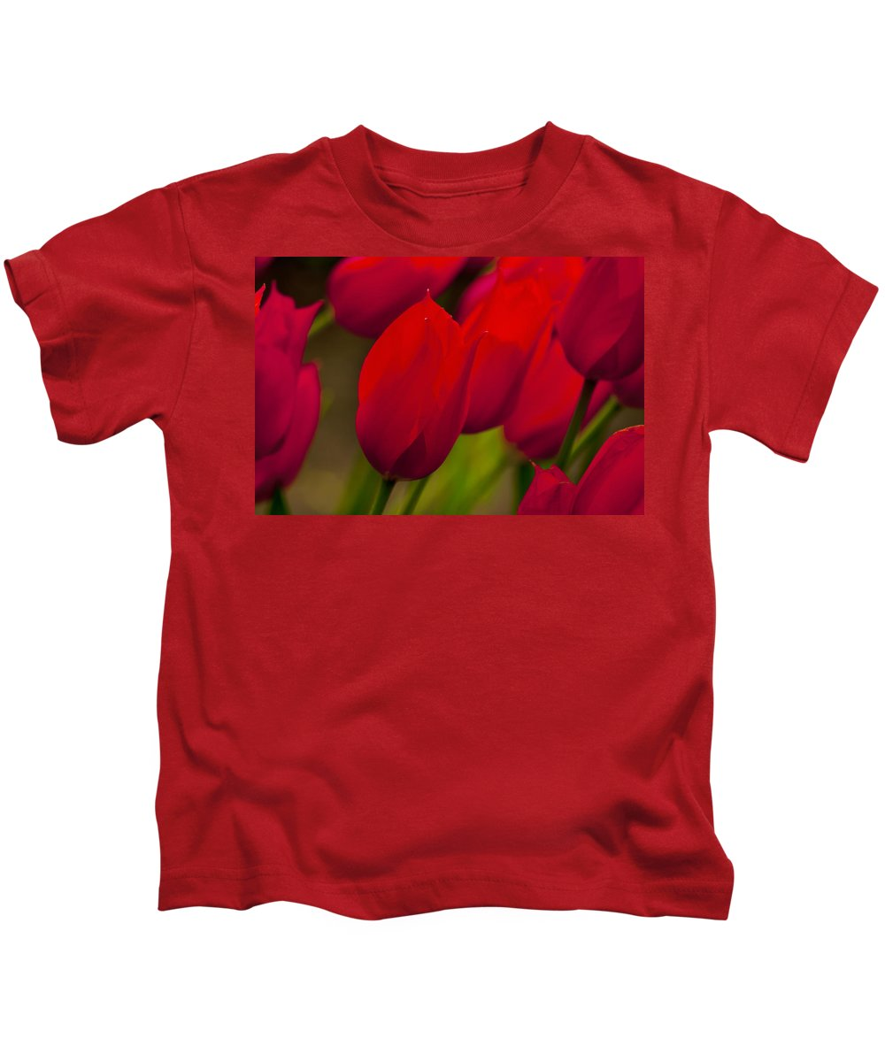 Tulip Kids T-Shirt featuring the photograph Red Tulips In Holland by Beth Riser