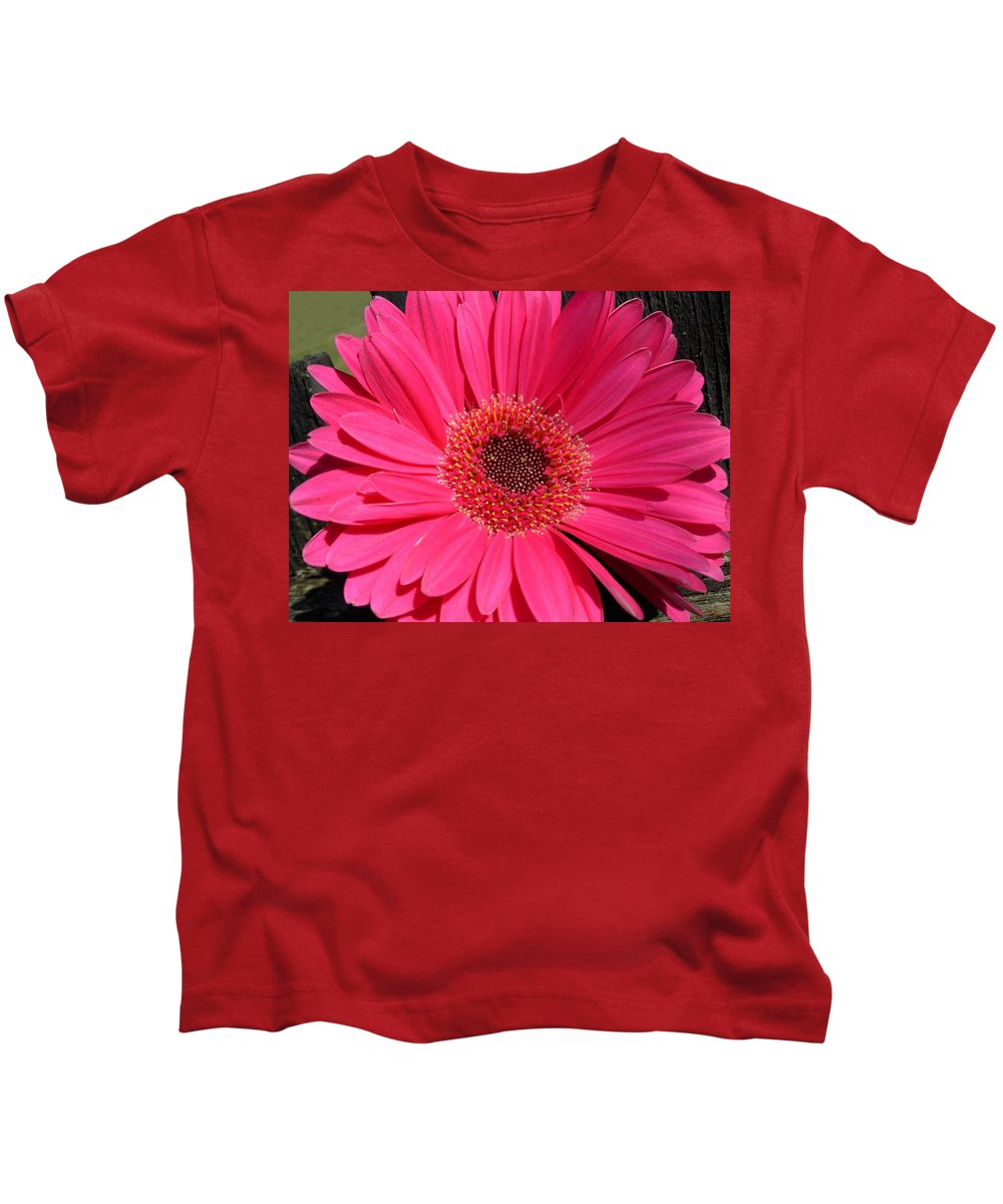Gerbera Photographs Kids T-Shirt featuring the photograph 1052c by Kimberlie Gerner