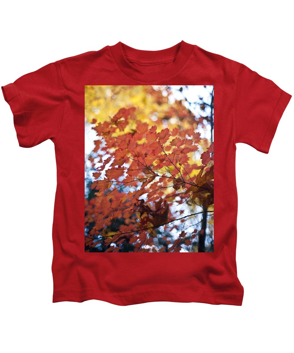 Autumn Kids T-Shirt featuring the photograph Autumn Brilliance by Mike Reid