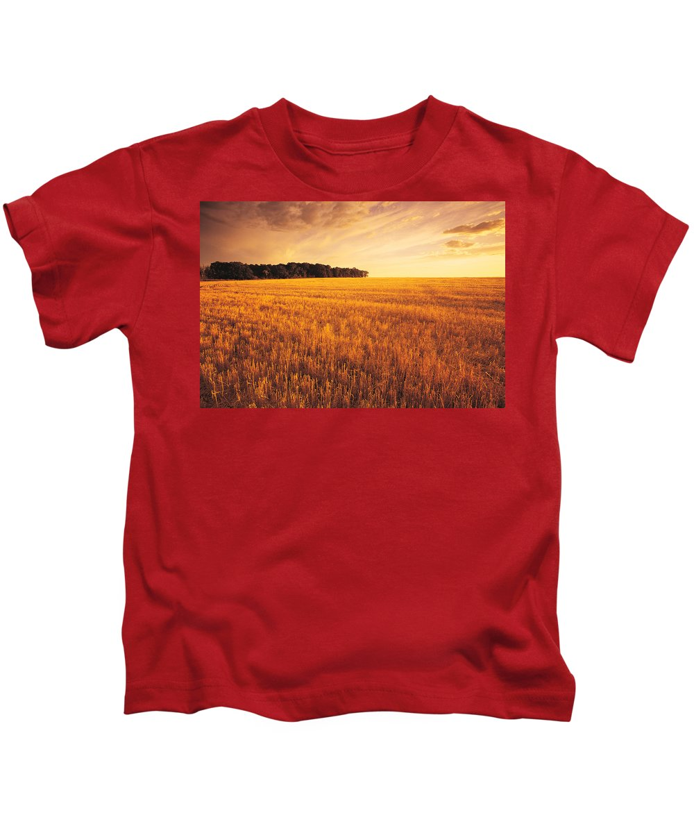 Colour Image Kids T-Shirt featuring the photograph Field Of Grain Stubble Near St by Dave Reede