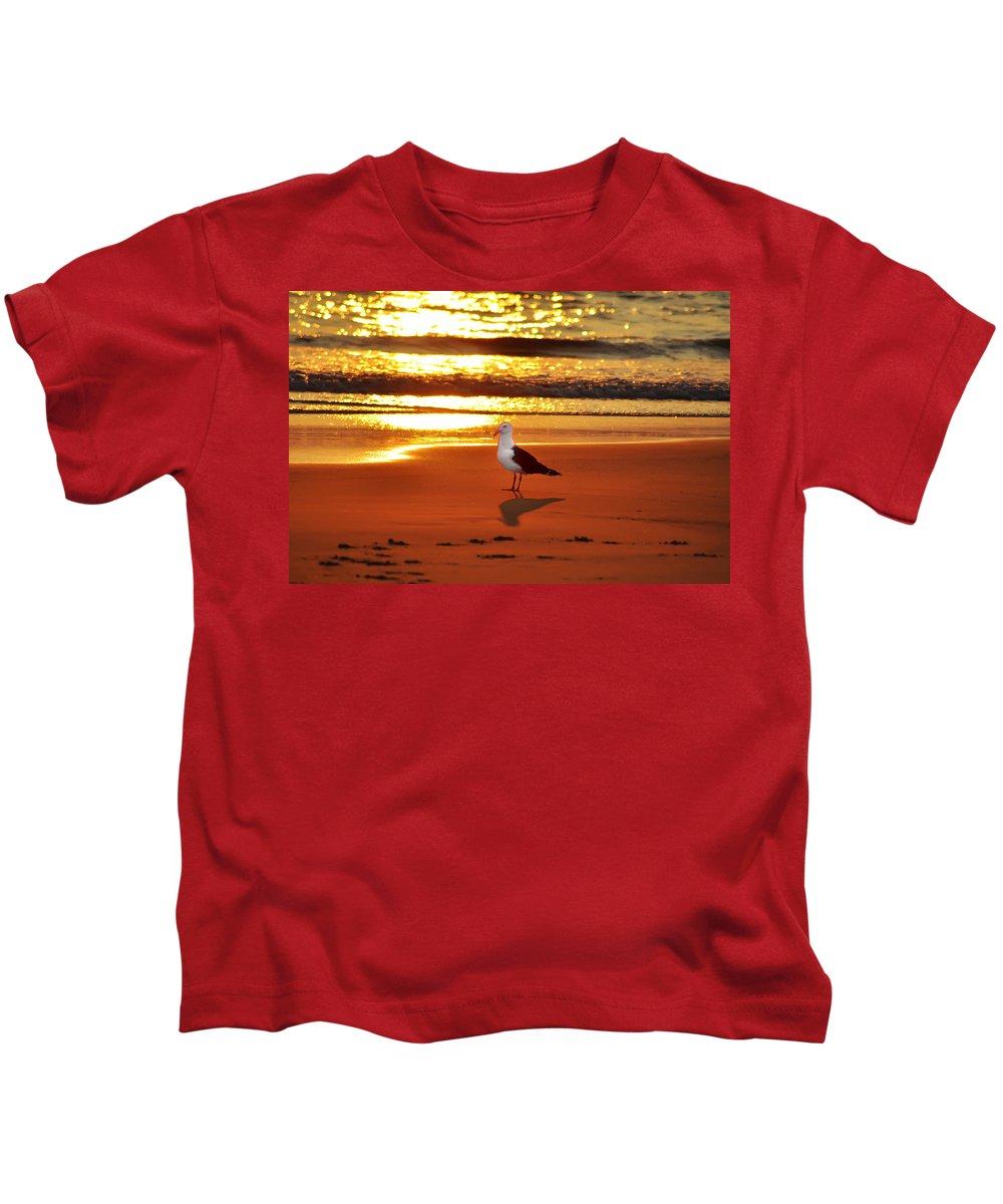 Golden Sunrise Seagull Kids T-Shirt featuring the photograph Golden Sunrise Seagull by Bill Cannon