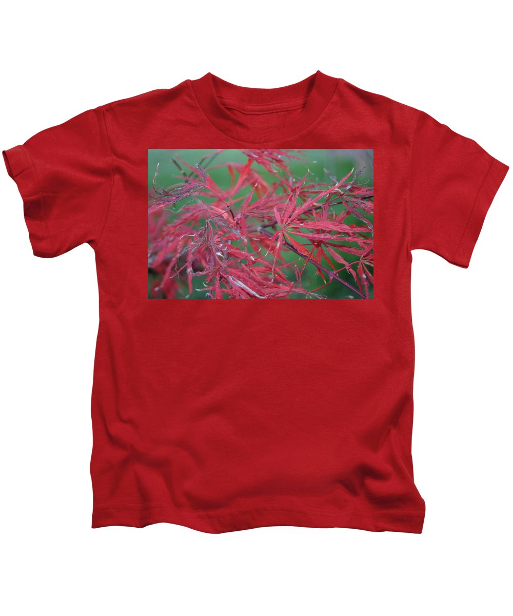 Red Leaf Kids T-Shirt featuring the photograph Japanese Red Leaf Maple Hybrid by Leann DeBord