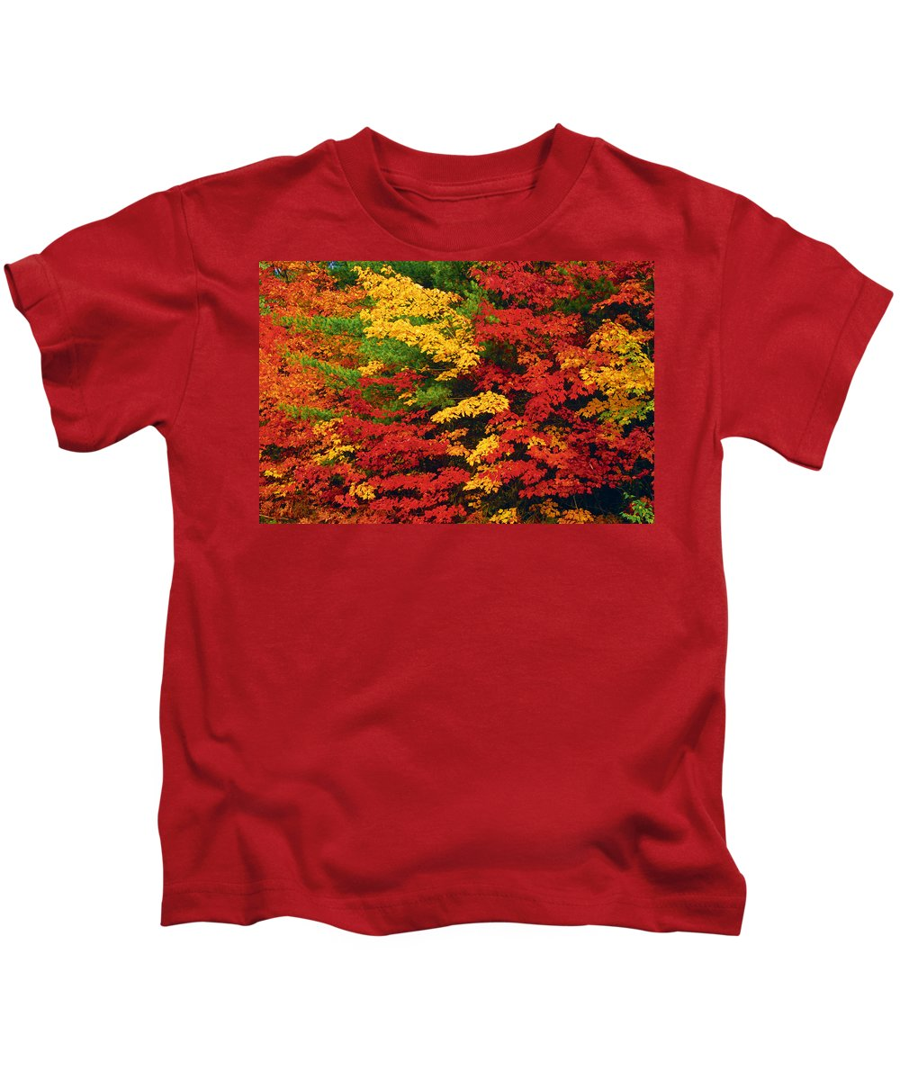 Autumn Colors Kids T-Shirt featuring the photograph Leaves On Trees Changing Colour by Mike Grandmailson