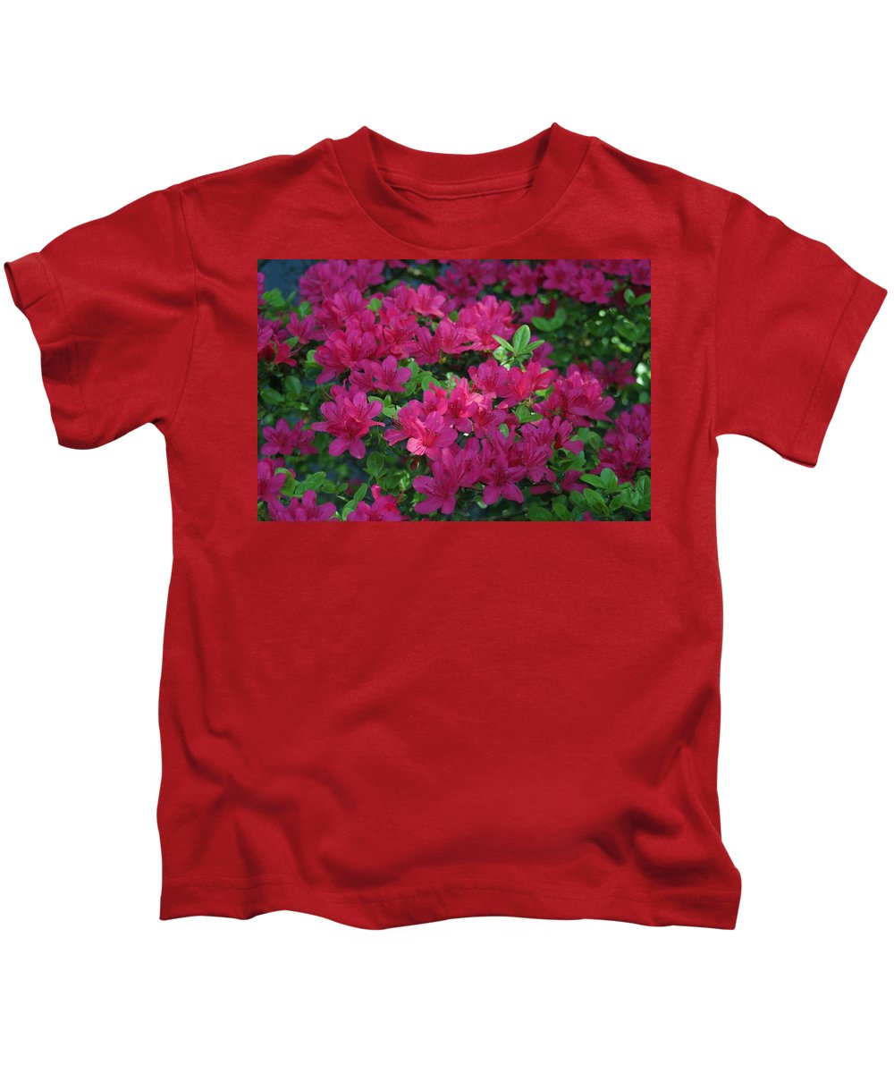 Kids T-Shirt featuring the photograph Pink Along The Fence by Barbara S Nickerson