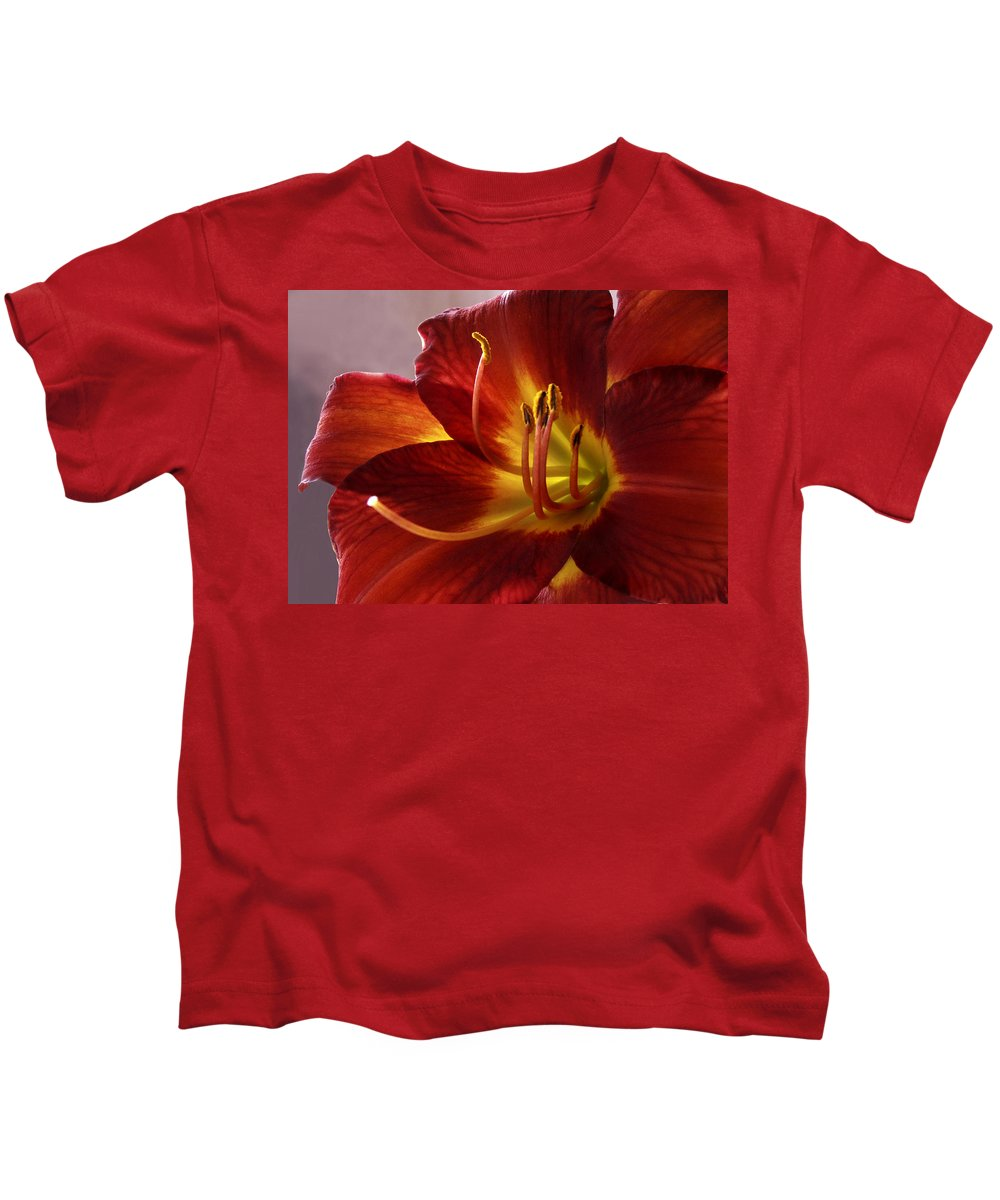 Red Lily Kids T-Shirt featuring the photograph Red Day Lily by Nancy Griswold